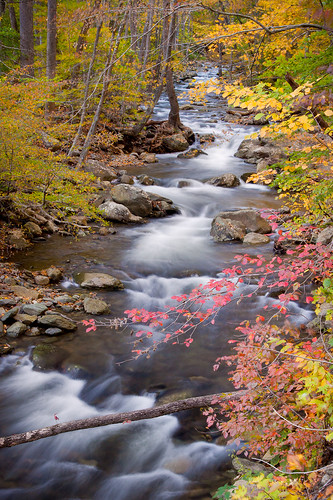 park longexposure autumn fall water colors leaves creek virginia waterfall soft hike shenandoah whiteoakcanyon ☆thepowerofnow☆