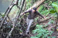 Lluitant per arribar a la cascada