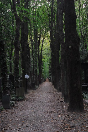 Jewish cemetery, Weißensee | by Forest Pines