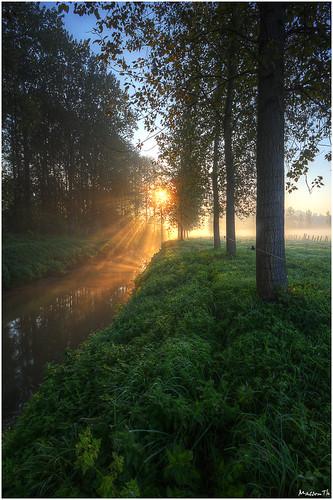 trees sunset brussels green canon river eos belgium belgie hdr senne zenne 60d drogenbos