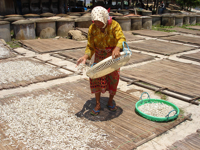 Woman drying fish, Malaysia. Photo by Hong Meen Chee, 2005