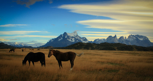 Torres Del Paine in autumn (april 2010) | by Steve Behaeghel