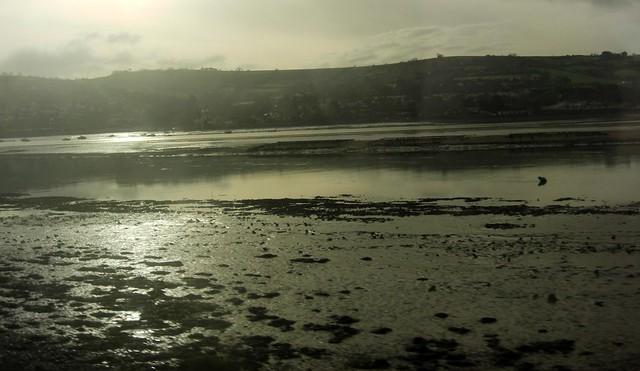 Exe Estuary Devon