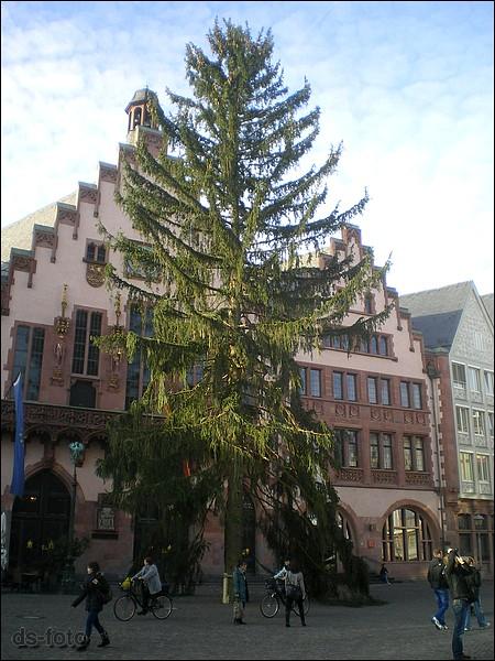 Weihnachtsbaum Frankfurt.Frankfurt Römerberg Weihnachtsbaum Frankfurt A M Vor Dem Flickr