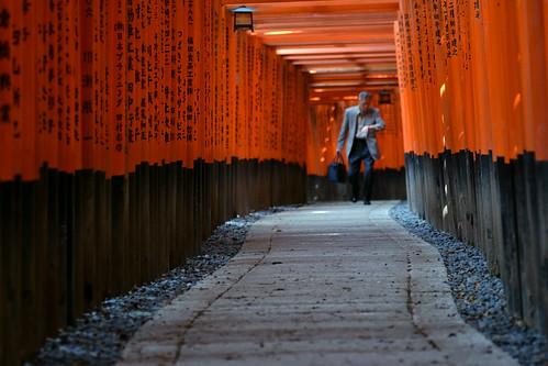 fushimi-inari | by Y.T..