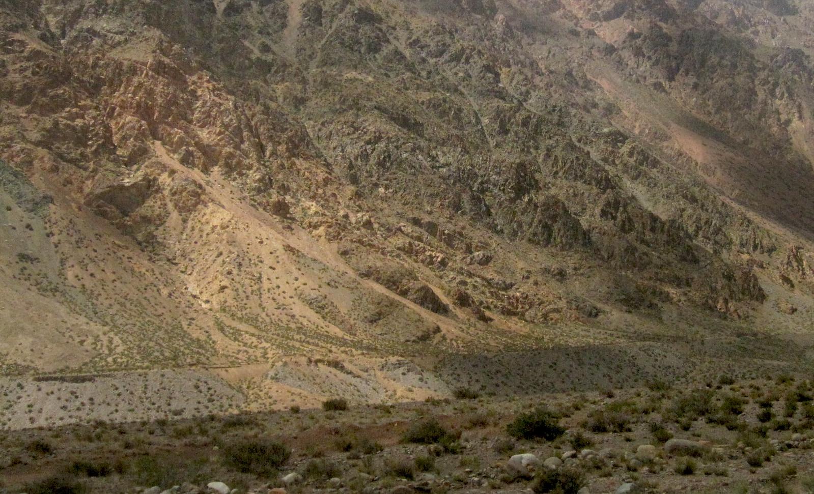 Mendoza 311