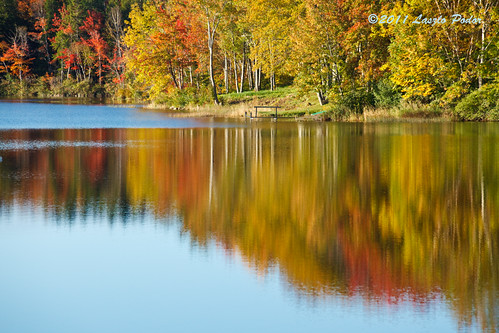 morning autumn lake canada fall water sunrise novascotia fallriver lakethomas gettyimagescanada