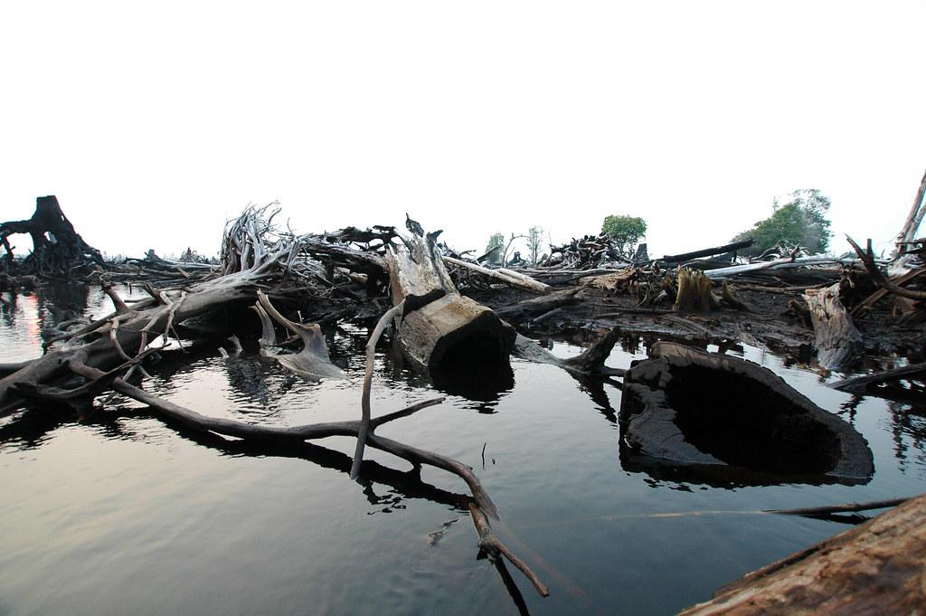 Burned peatlands