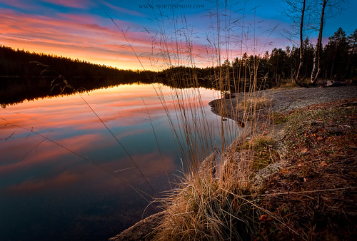 morning lake grass norway sunrise norge skandinavien norwegen noruega scandinavia noreg skandinavia 2011 ef1740mmf4lusm canoneos5dmarkii mortenprom