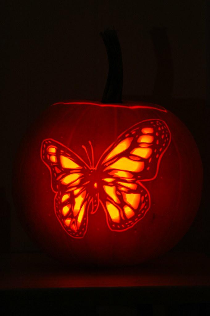 butterfly pumpkin carving 2 a butterfly design carved int flickr rh flickr com butterfly pumpkin carving templates free butterfly pumpkin carving stencil