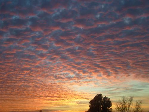 luz atardecer arte natural colores vida nubes copos suavidad