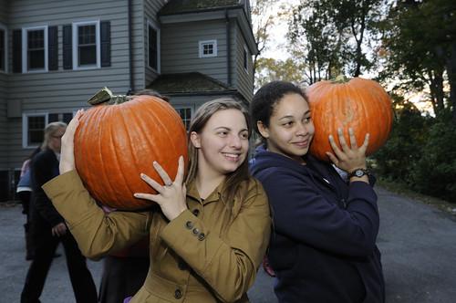 Pumpkin Carving 032