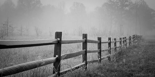 park morning autumn mist fall nature fog fence landscape outdoors frost meadow oakopenings toledoareametroparks swantonohio