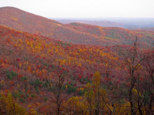 landscape fallcolors northcarolina blueridgeparkway westernnorthcarolina southernappalachians ccbyncsa canonpowershotsx10is