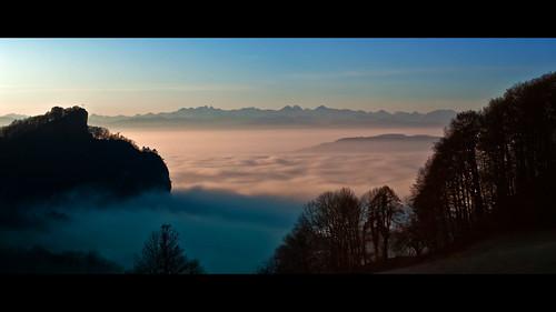 trees sea mist mountains alps fog sunrise island schweiz switzerland solothurn hauenstein olten trimbach froburg
