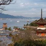 IWASO,AKI,MIYAJIMA,HIROSHIMA,IWAKUNIYA_SOBEI, THE FOUNDER of IWASO=