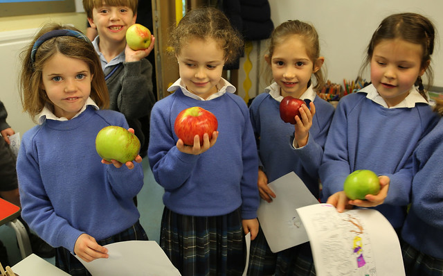 Fun with the Apple Day activities in Pre-Prep