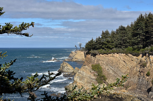 ocean cliff oregon pacific horizon capearagostatepark simpsonreefoverlook