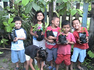 SCHOOL CHILDREN planting