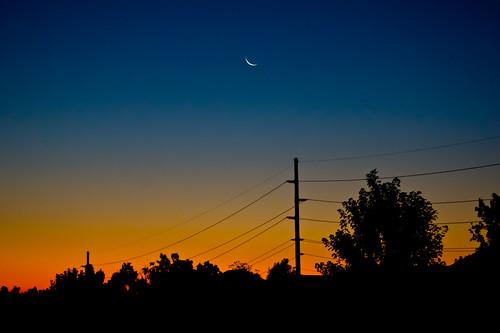 night clear regionwide lynngirdnerfigmeisterstudiosfamilyphotos