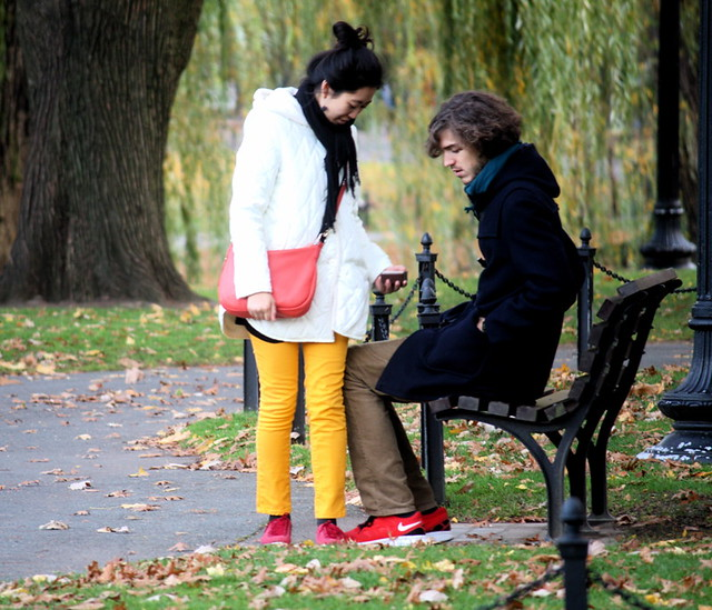 boston common foliage 16 people in the park