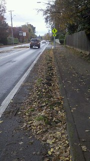 Cal Young and Bedford: Sod in the Bike Lane