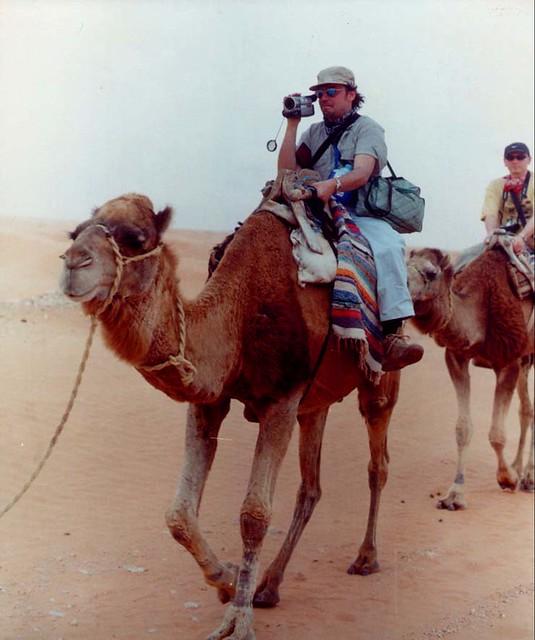 massi cammello