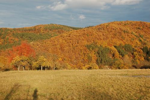 Herbst über dem  Ahrtal