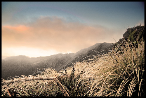 sunset newzealand cloud sun mist mountain wet grass clouds nikon hiking zealand ranges nz wellington powell labour tramping hdr highdynamicrange tararuas holdsworth d90 mtholdsworth nikond90 markwr markwhiterobinson mwhiterobinson hdrpowellhut