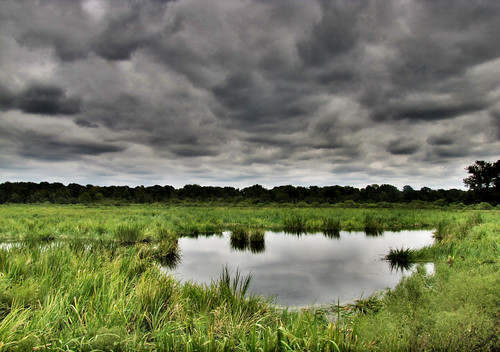 clouds hdr highdynamicrange augustaga phinizyswamp dynamicphotohdr phinizyswampnaturepark canonpowershotsx20is