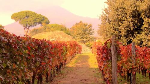 ....romanticamente autunno...