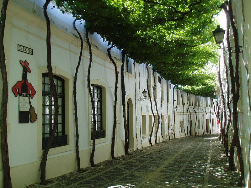 Canopied Street, Jerez