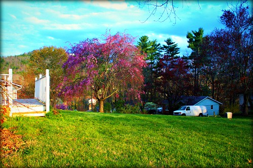 lighting pink blue trees red summer sky orange usa white black mountains colour green nature beautiful yellow azul clouds digital canon wow outdoors eos rebel lights landscapes nc spring cool nice colorful warm pretty shadows seasons gorgeous awesome vivid sunny carolina eastern scenics xsi luminosity colorphotoaward
