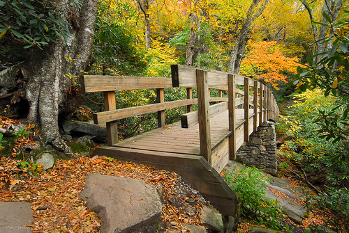 bridge autumn mountains fall nature colors outdoors hiking northcarolina trail blueridgemountains blueridgeparkway walkingbridge wnc grandfathermountain tanawha roughridge westernnorthcarolina southernappalachians