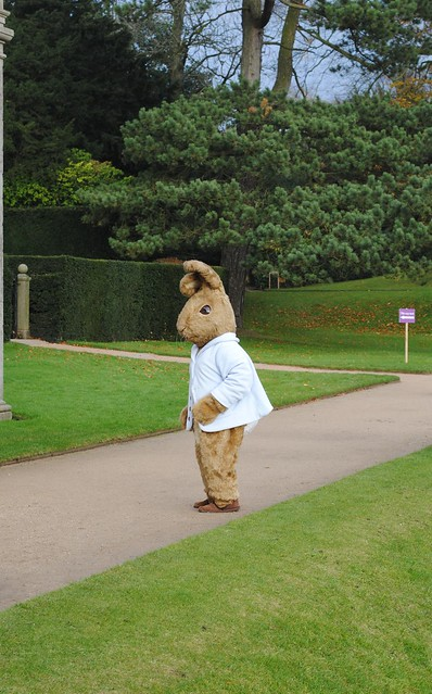 Peter Rabbit feels all lonely