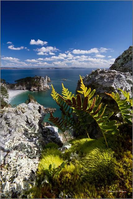 L'ile Vierge...joyau de la Presqu'ile de Crozon !