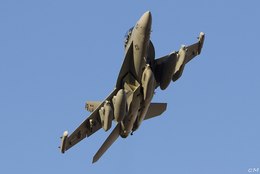 """THUNDER42"" VAQ-135 Black Ravens F-18G"