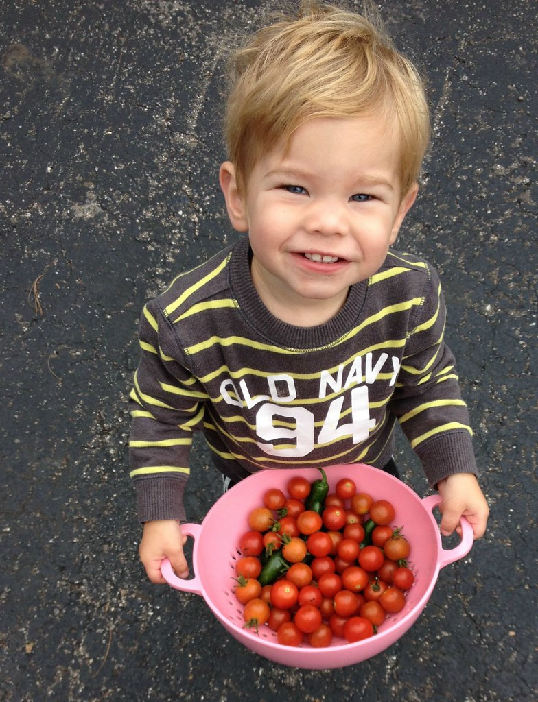 simons' tomatoes