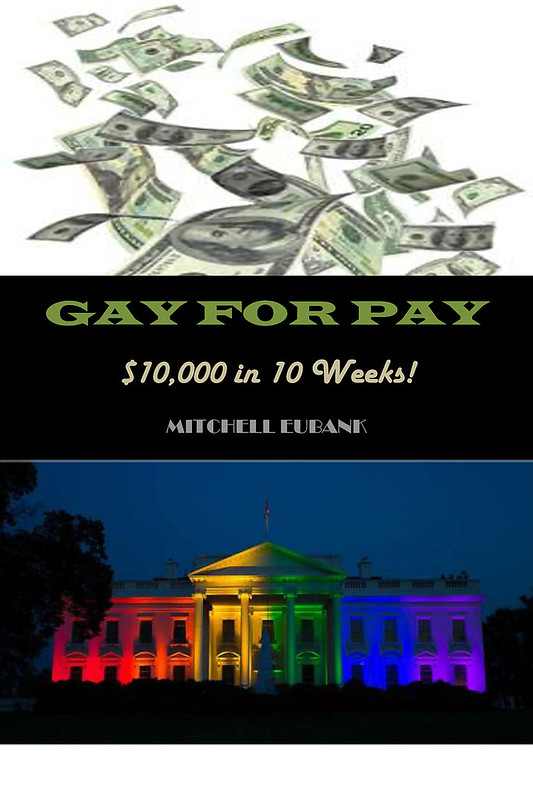 """Cover for """"Gay for Pay"""""""