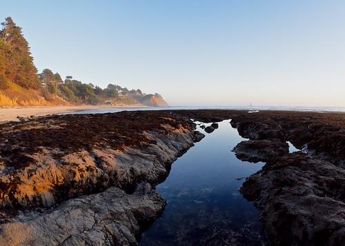 sunset tidepool california coast goldenhour beach ocean pacific