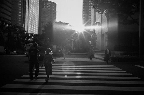 Shinjuku   by elvinljw