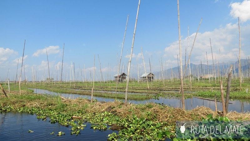 Cómo tramitar el visado de Myanmar en Bangkok y visitar Lago Inle