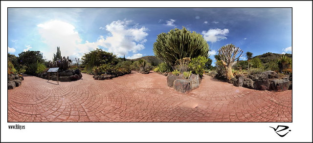 :: Jardin de Cactus 360º ::