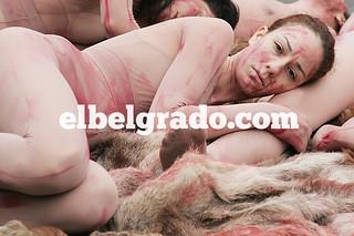 Fur is murder in Belgrade | by elbelgrado