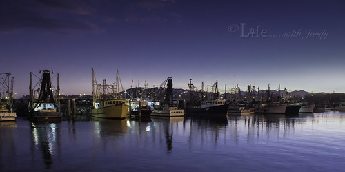 sunset boats harbour au australia mooring newsouthwales allrightsreserved coffsharbour moored ©lifewithjordyphotography