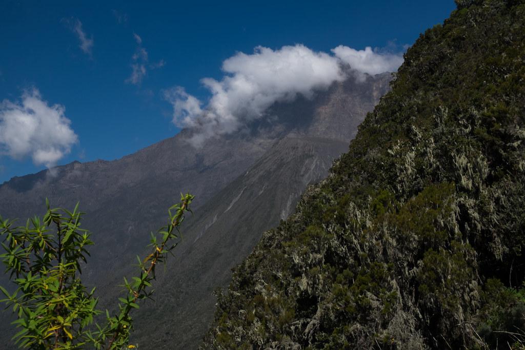 Aufstieg zur Sattel Hütte  - 2. Tag Mount Meru Tour zur Akklimatisierung. Tansania - Kilimanjaro Kraterschläfer Expedition 2016, Wikinger Reisen