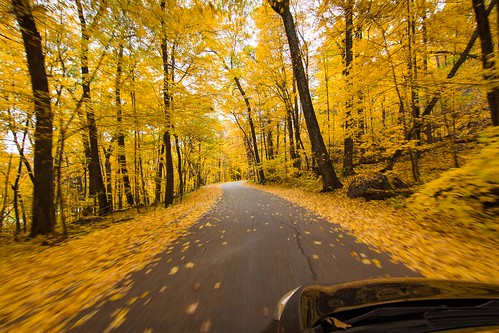 road trip autumn trees motion nature wisconsin landscape gold october driving action wideangle tokina fallfoliage f28 devilslake 1116mm wisconsinfall2015