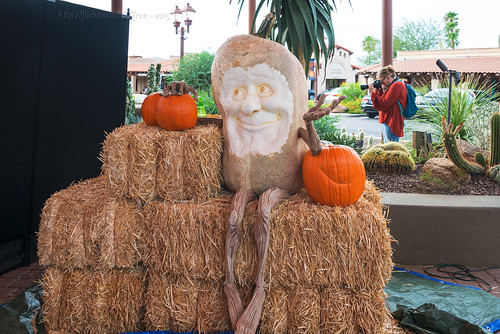 arizona garden pumpkin carved ray az carving carver carefree enchanted villafane rayvillafane enchantedpumpkingarden