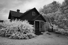 Mill Race Village-1226
