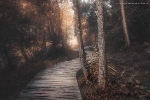 new autumn fall photoshop canon woodland scotland path boardwalk 1785mm efs newlanark lanark efs1785mm 60d canon60d